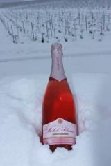 champagne rosé de saigné